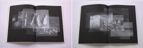 Brittle Land, an artist book on Alexandra Navratil.