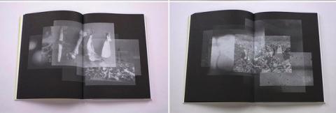 Brittle Land, an artist book on Alexandra Navratil.